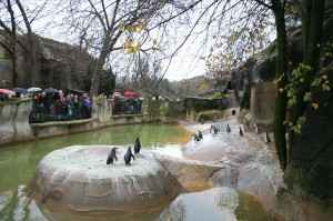 zoo_of_vincennes